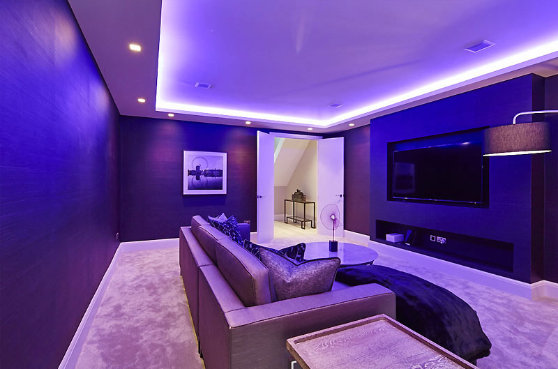 Basement entertainment room, guest lounge